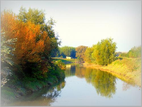 田舎にある川